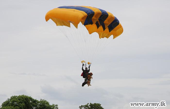 Commando Parachutist Makes History Descending with War Dog, Teesha
