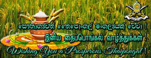 Wishing You a Prosperous Thaipongal !