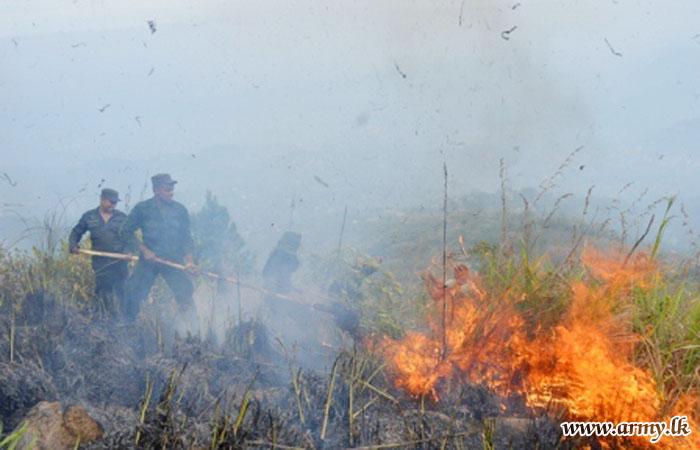 Troops Fighting Against Bushfire