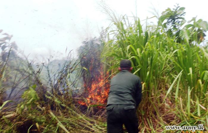 Army Troops Control Bush Fire