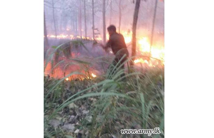 121 Brigade Troops Control One More Bushfire at Tanamalwila