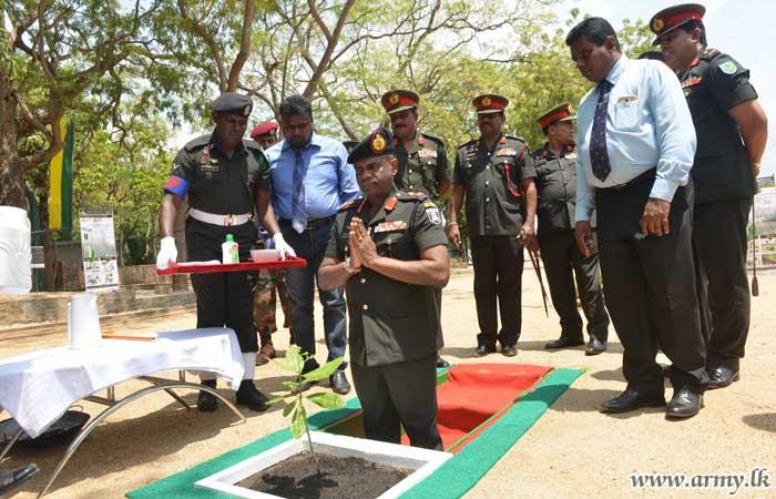 22 Division Joins National Drive Distributing 6000 Saplings among Trincomalee Students
