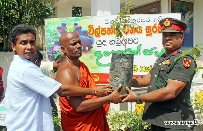 Public Interest in Army Wilpattu Reforestation Project Multiplies