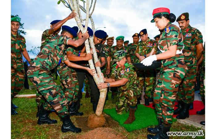 Mega 'Thuru Mithuru Nawa Ratak' Green Project Inaugurated to Cover All Island-wide Formations