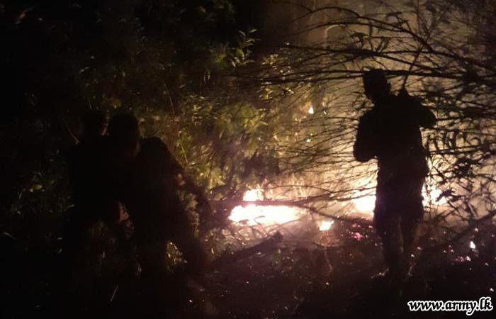 Muthurajawela Wild Fire Extinguished