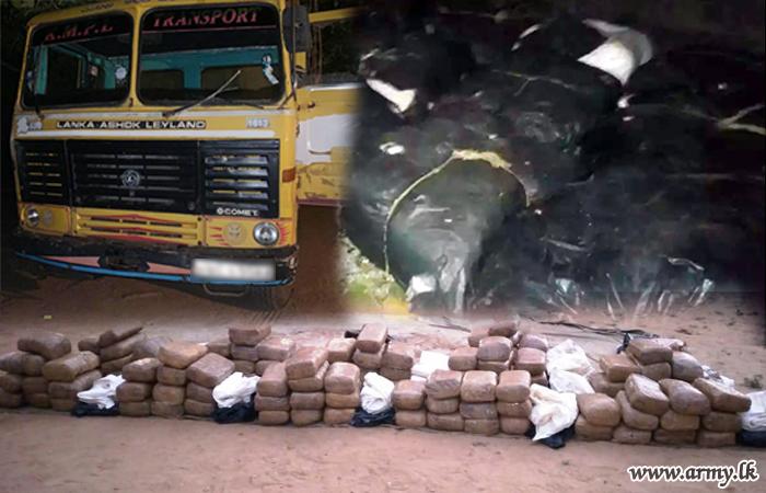 Kilinochchi Troops Detect Biggest Haul of 323 kg of Cannabis