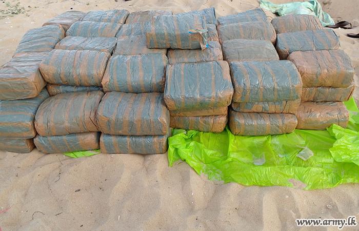 MIC & SLNG Troops Take Cannabis Stocks into Custody