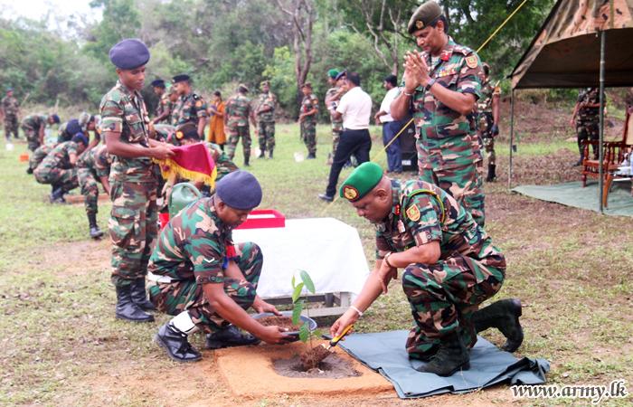 Kilinochchi Troops Plant 3827 Jack Plants Under 'Ranaviru Haritha Arana'
