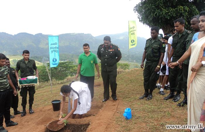 Troops Plant Tree Saplings around Reservoirs