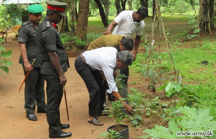 Ayurvedic Administrators Visit 61 Division Herbal Garden