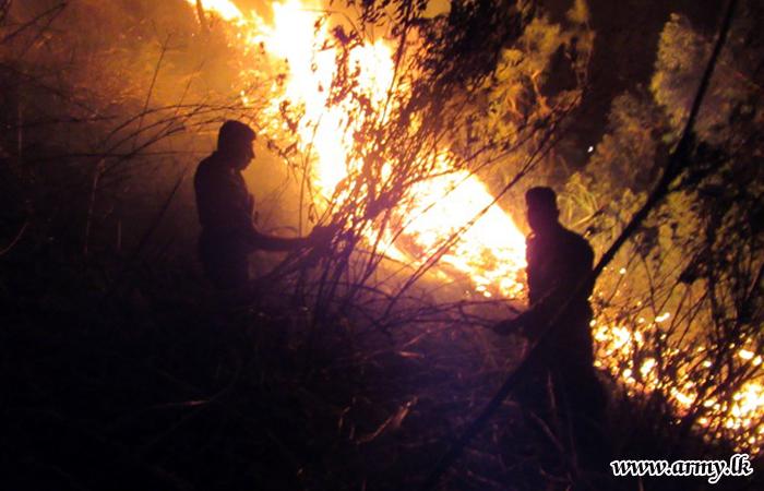 Bush Fire in Divithotawela Brought Under Control