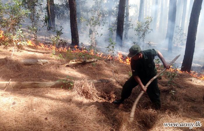 Army Troops Douse Bush Fire at Ambuluwawa