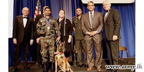 Army Mine Detection Dog & Its Handler Awarded Accolades in Washington