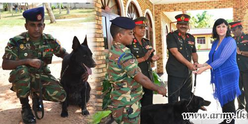 Mine Detection Dog, Zira Having Cleared Minefields Flies Back Home