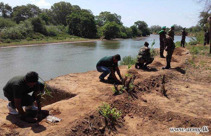 Kandakadu Troops Plant Trees Along River Banks